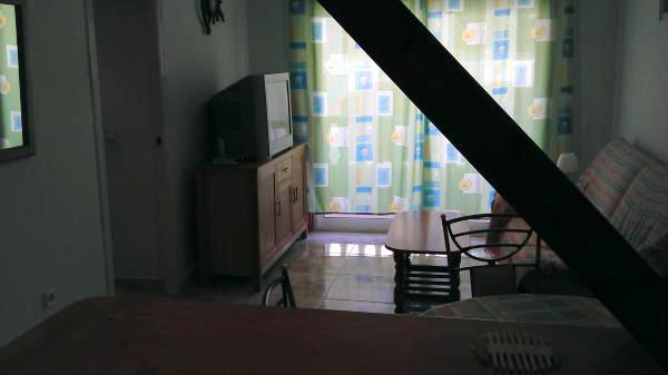 Аренда квартиры в торревьеха частные объявления недалеко от моря