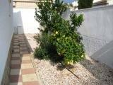 Растения во дворе виллы